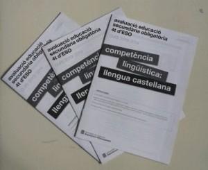 Els quaderns de les competències bàsiques del curs passat.
